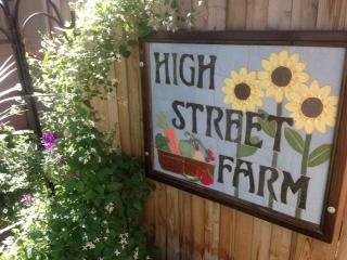 Yoga at High Street Farms