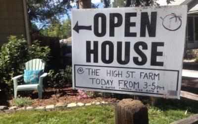 High Street Farm Open House