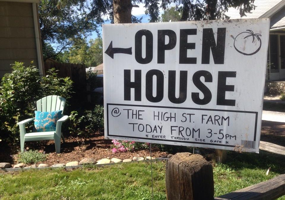 High Street Farm Open House